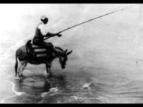 O prazer da pesca no rio Arade